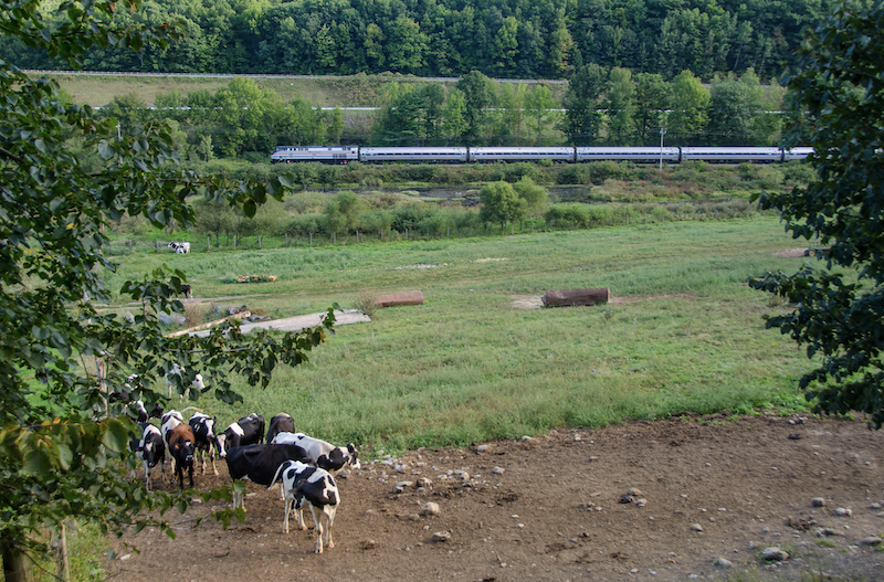 Amtrak to Resume Service in Vermont in July
